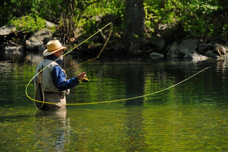 Fly Fishing 1
